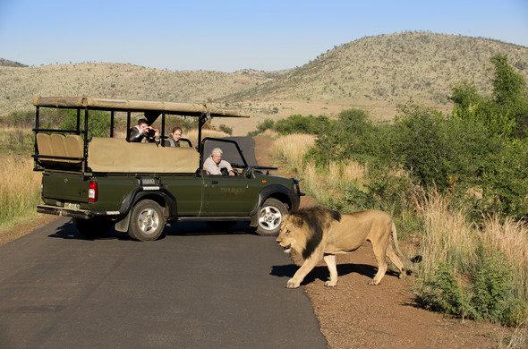 6 DAY PILANESBERG GAME RESERVE - • Pilanesberg Game Reserve • Big 5 Game viewing experience6 DAYS / 5 NIGHTS