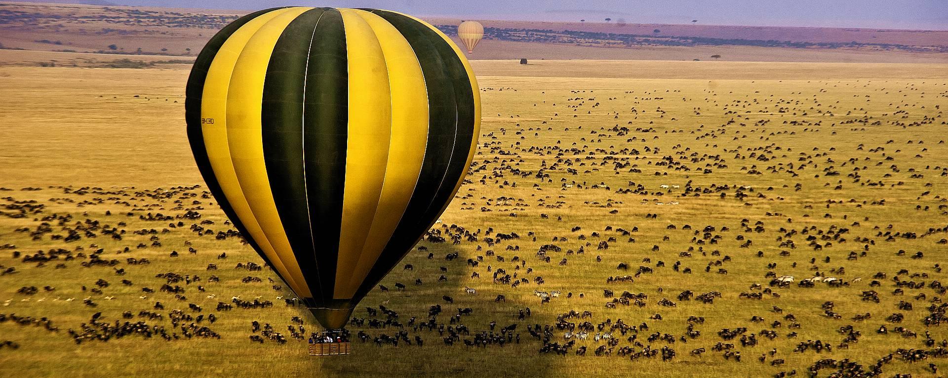 africa safari masai mara 16.jpg