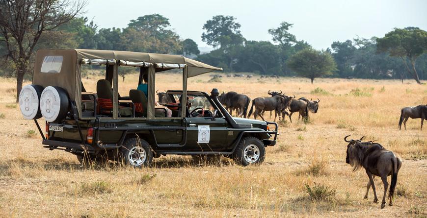 africa safari northern serengeti 9.jpg