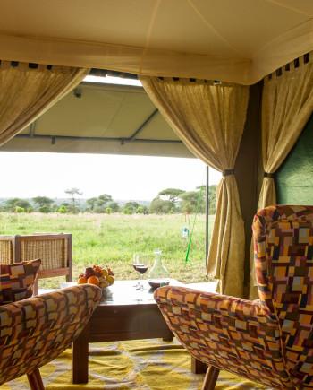 africa safari northern serengeti 5.jpg