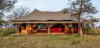 africa safari northern serengeti.jpg