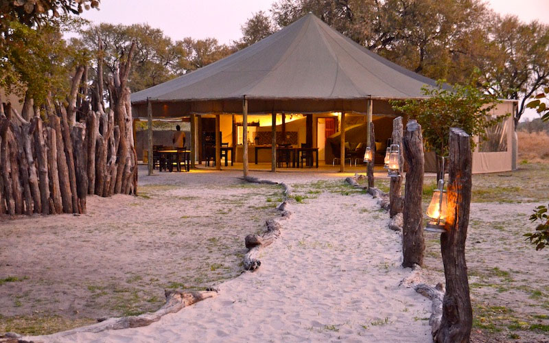 africa safari  khwai 3.jpg