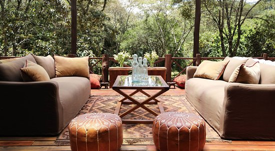 africa safari nairobi 22.jpg