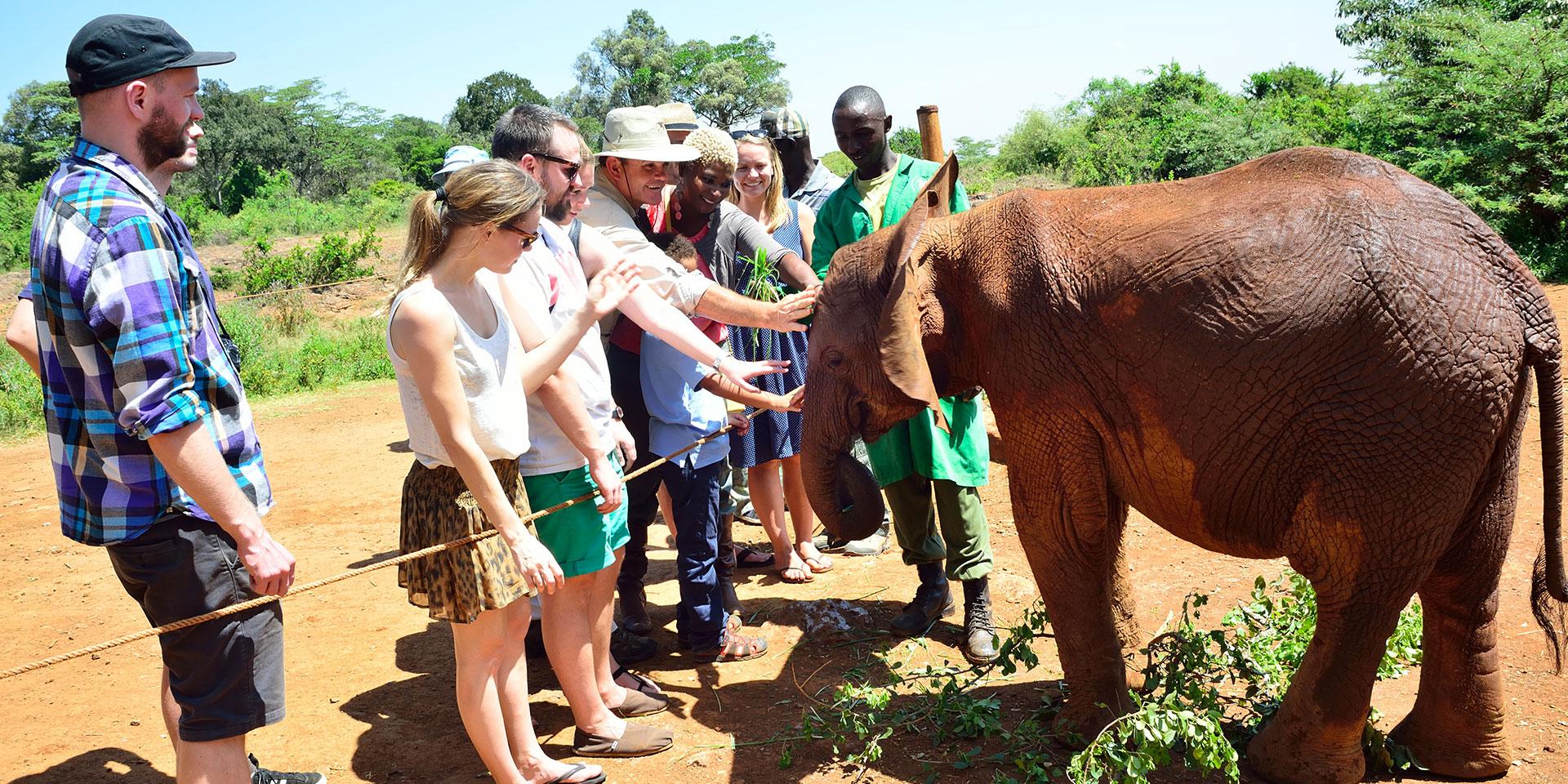 africa safari nairobi 4.jpg