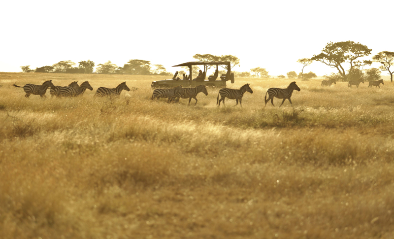Kenya25.jpg