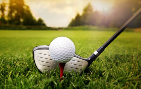 12 Day South africa golf & safari -