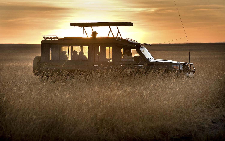 safari24.jpg