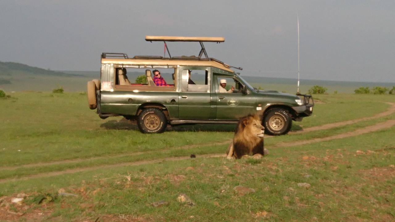 safari_i1.jpg