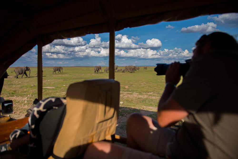 Amboseli12.jpg