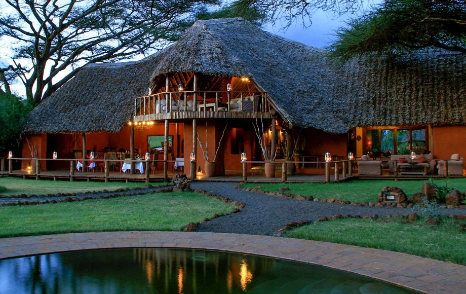 Amboselia1.jpg