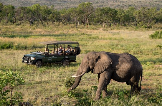 Day: 2,3,4,5: WELGEVONDEN GAME RESERVE - The spectacular scenery, a diverse mosaic of habitats and excellent game viewing.