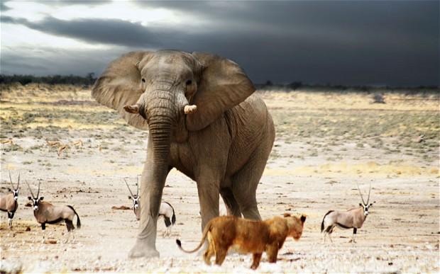 8 DAY TASTE OF NAMIBIA -