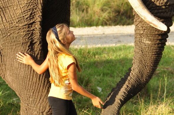 Knysna Elephants7.jpg