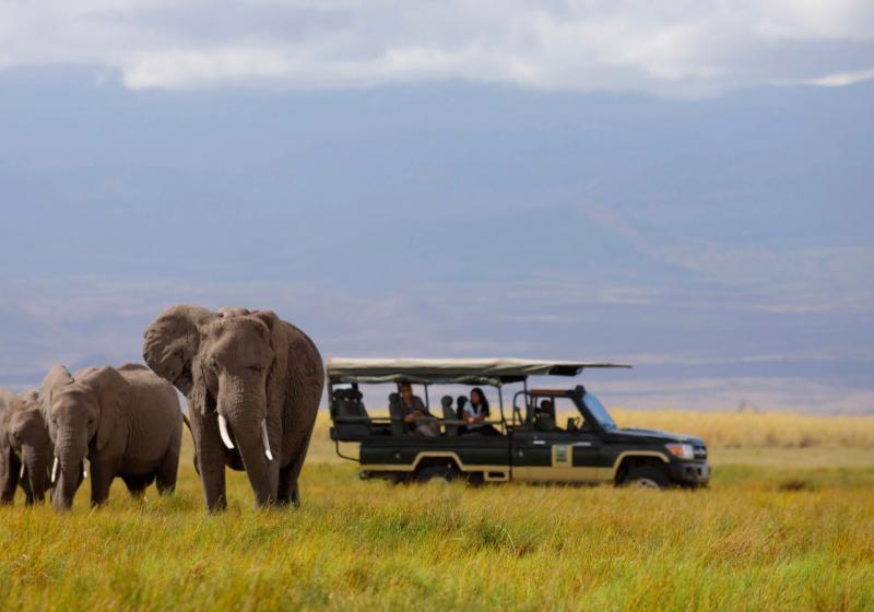 Amboseli16.jpg