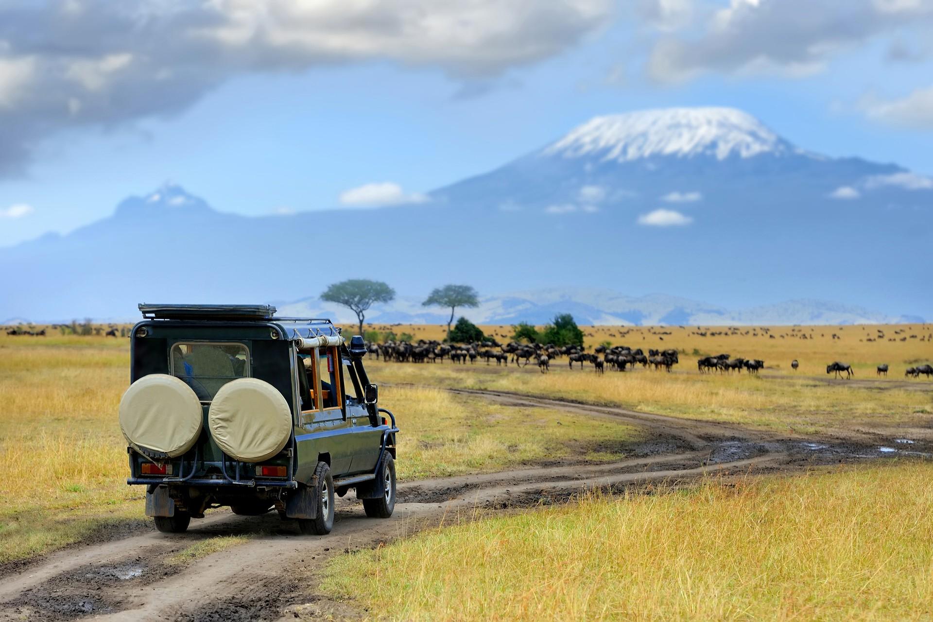 Amboseli23.jpg