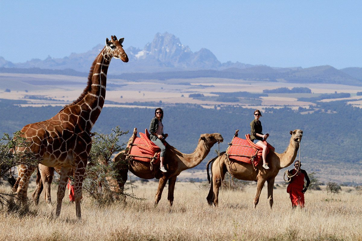 12 DAY KENYA CAMEL ADVENTURE - • Amboseli National Park • Camel Safari • Masai Mara National Park