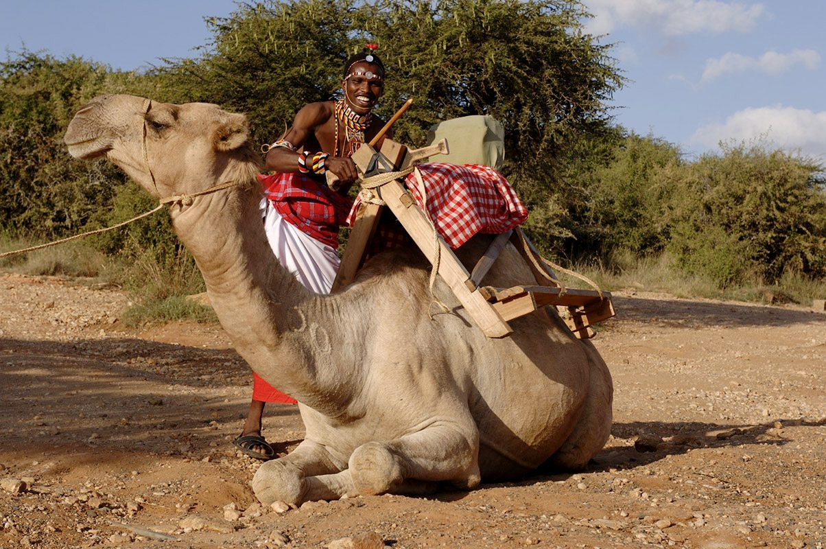 Day 5,6,7,8: CAMEL WALKING SAFARI - Experience amazing views of Kenya's wildlife as you are escorted by Samburu and Maasai guides. Enjoy the stunning scenery as your caravan of camels carries you across the Laikipia Plateau.