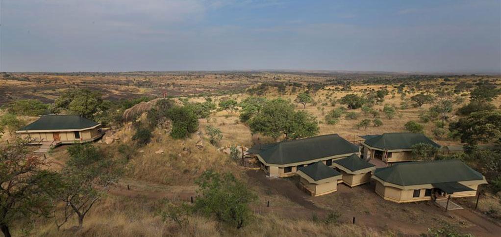Northern Serengeti6.jpg