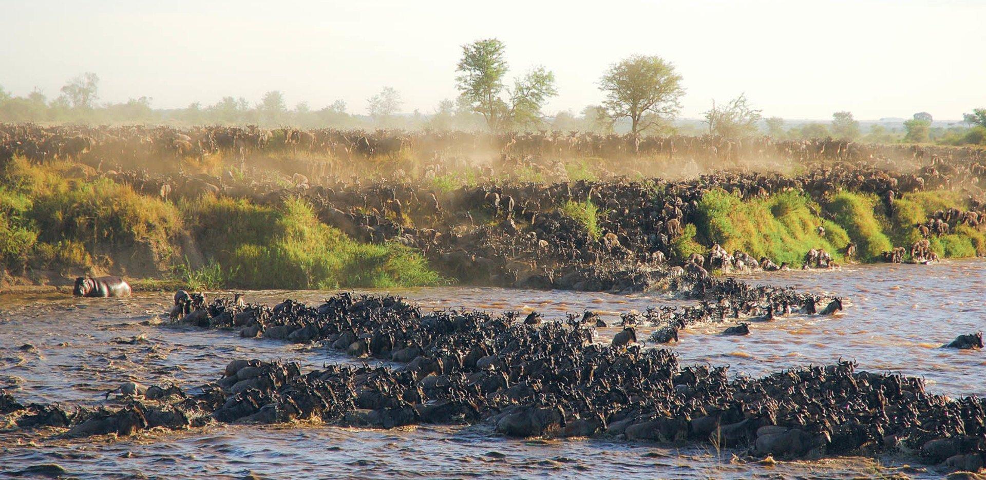 Northern Serengeti16.jpg