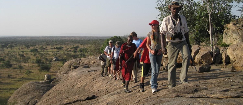 Serengeti-walking-safari-1500x650.jpg
