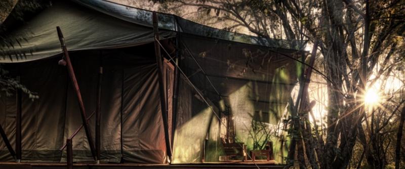 Mara camp12.png