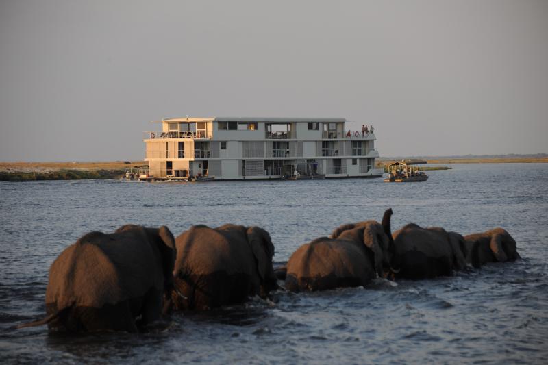 Zambezi Queen11.jpg