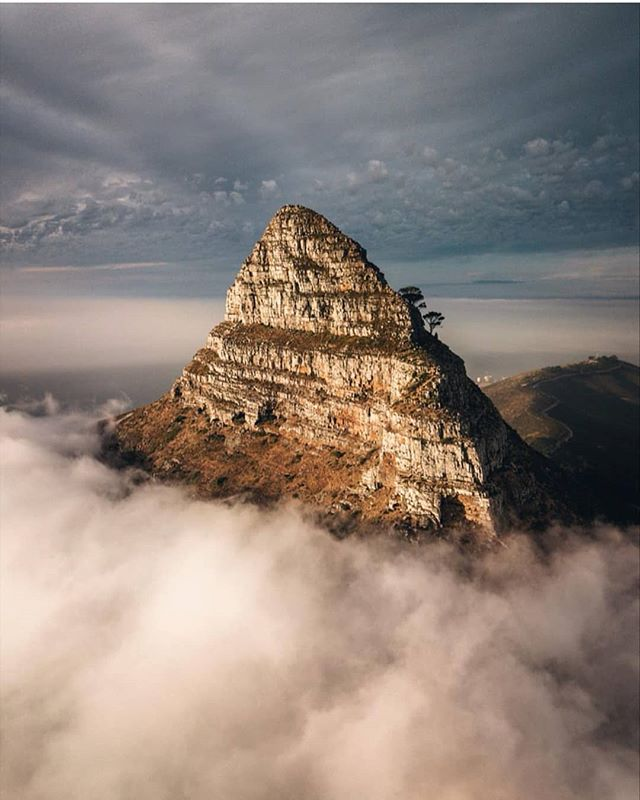 We can't seem to stop scrolling through all the epic photos taken in South Africa - it only makes us more excited to be headed there in November! 😁 This one by @janikalheit is of Lion's Head, one of the hikes we'll be conquering while we're in Cape Town.  It won't be easy, but we're all about those insane views and once-in-a-lifetime experiences! Leave a comment and tell us what you want to see when we're in Cape Town - or better yet, JOIN US! 😉♥️ . . . #findyourpack #travelsouthafrica #remotework #remotelifestyle #freedompreneur #passportready #ditchthedesk #entrepreneurlifestyle #travelinspiration #comingsoon #workfromanywhere #nomads #getoutside