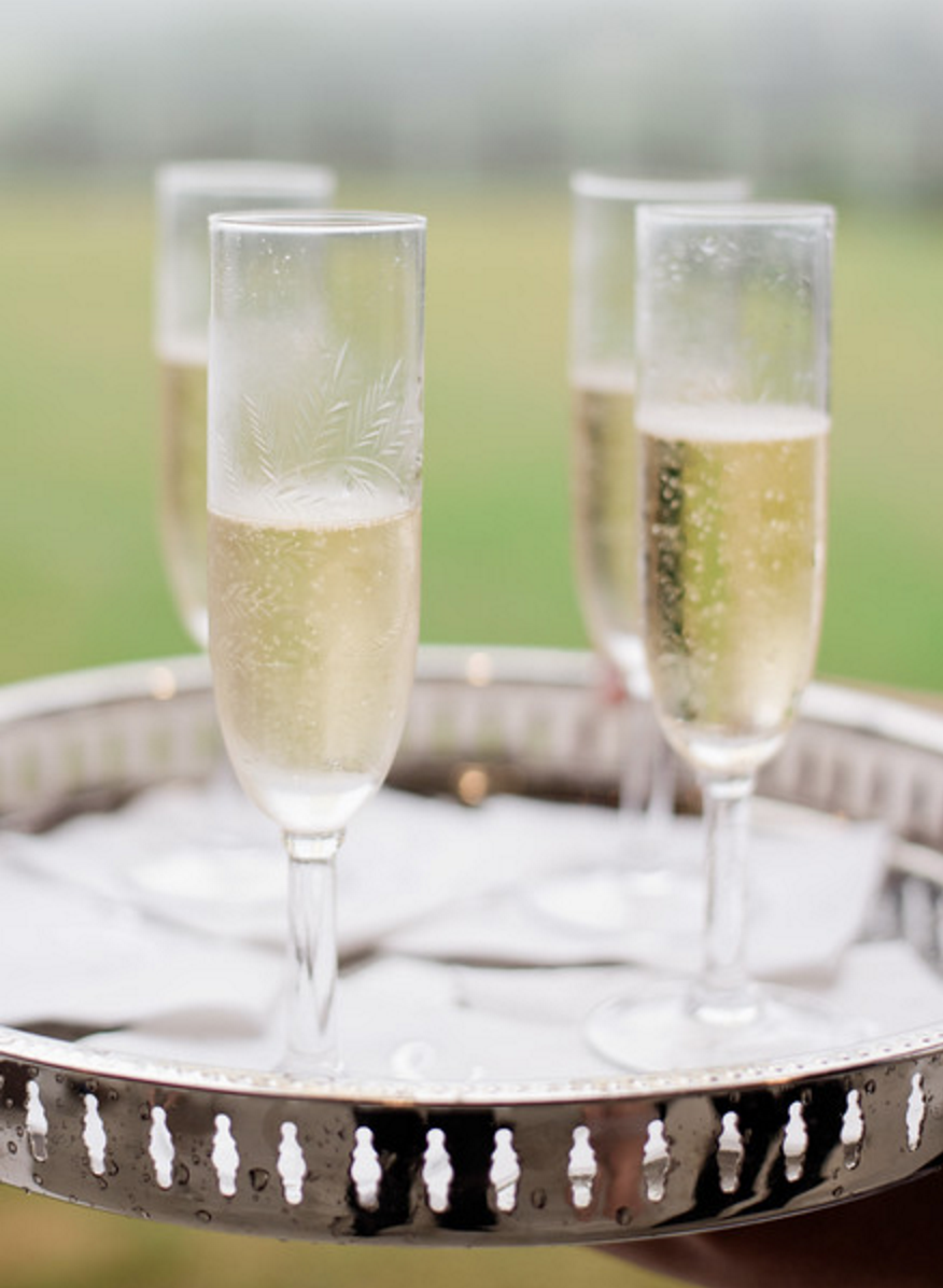 Wedding Champagne Toast | Spring Texas Vineyard Wedding