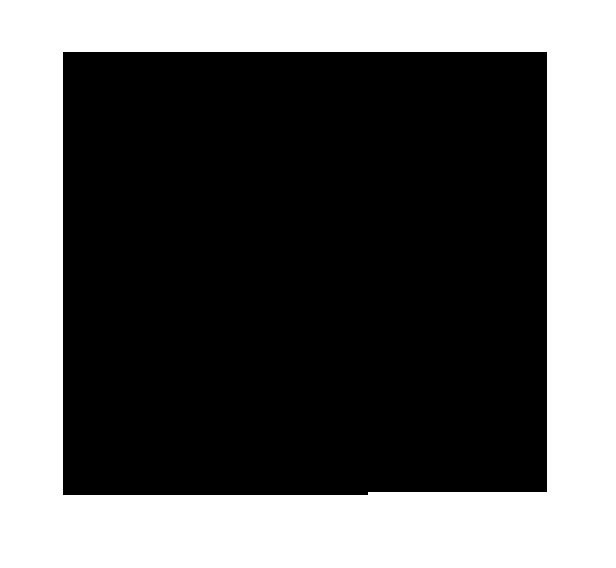 noun_250400_cc.png