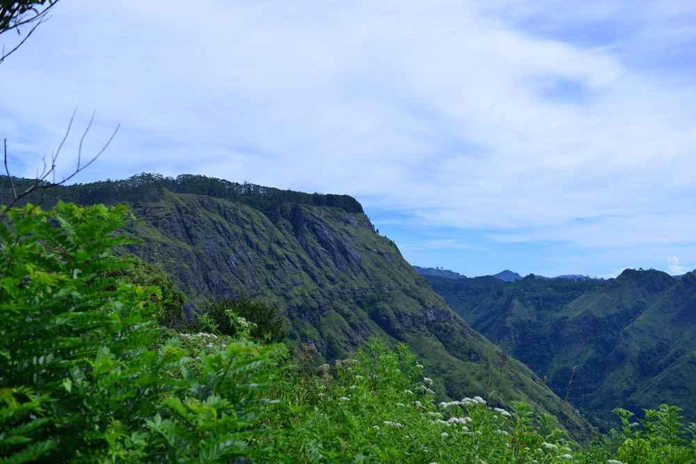 Ella Rock Sri Lanka, walkable from Amba Estate.