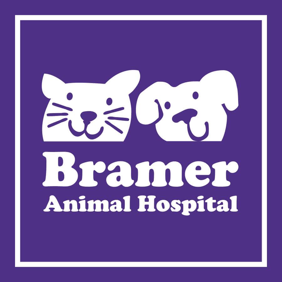 Bramer-Logo-FINAL-square-color.jpg