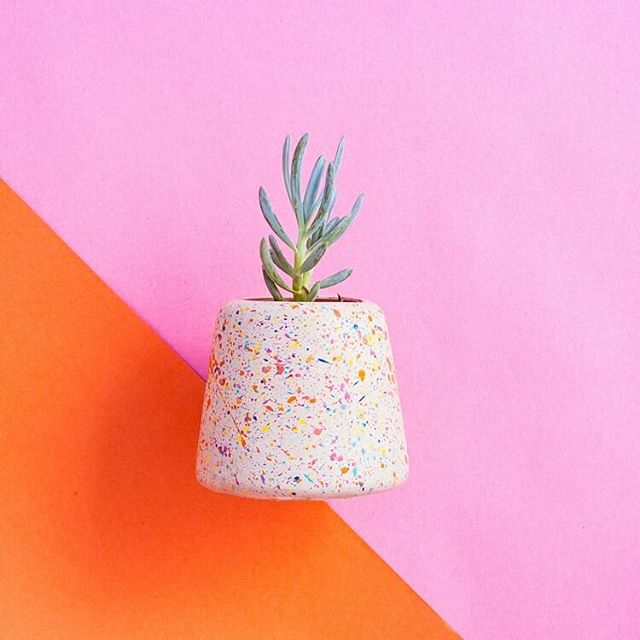 ⏺Don't worry about a thing...'Cause every little thing gonna be alright . Channelling the great words of Bob Marley this Monday morning :) Have a killer Monday everyone! . . . #concrete #dontworry #behappy #handmade #design #sprinkles #grow #sustainable #createyourspace #interiors #interiordesign #decor #happy #gift #heybulldogdesign #talkmore #mondayblues #smile #homewares #ceramic #pattern #play #surfacedesign