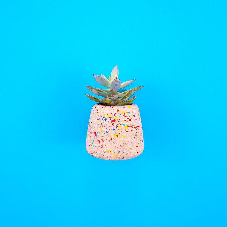 Sprinkles Planter Large (3).jpg