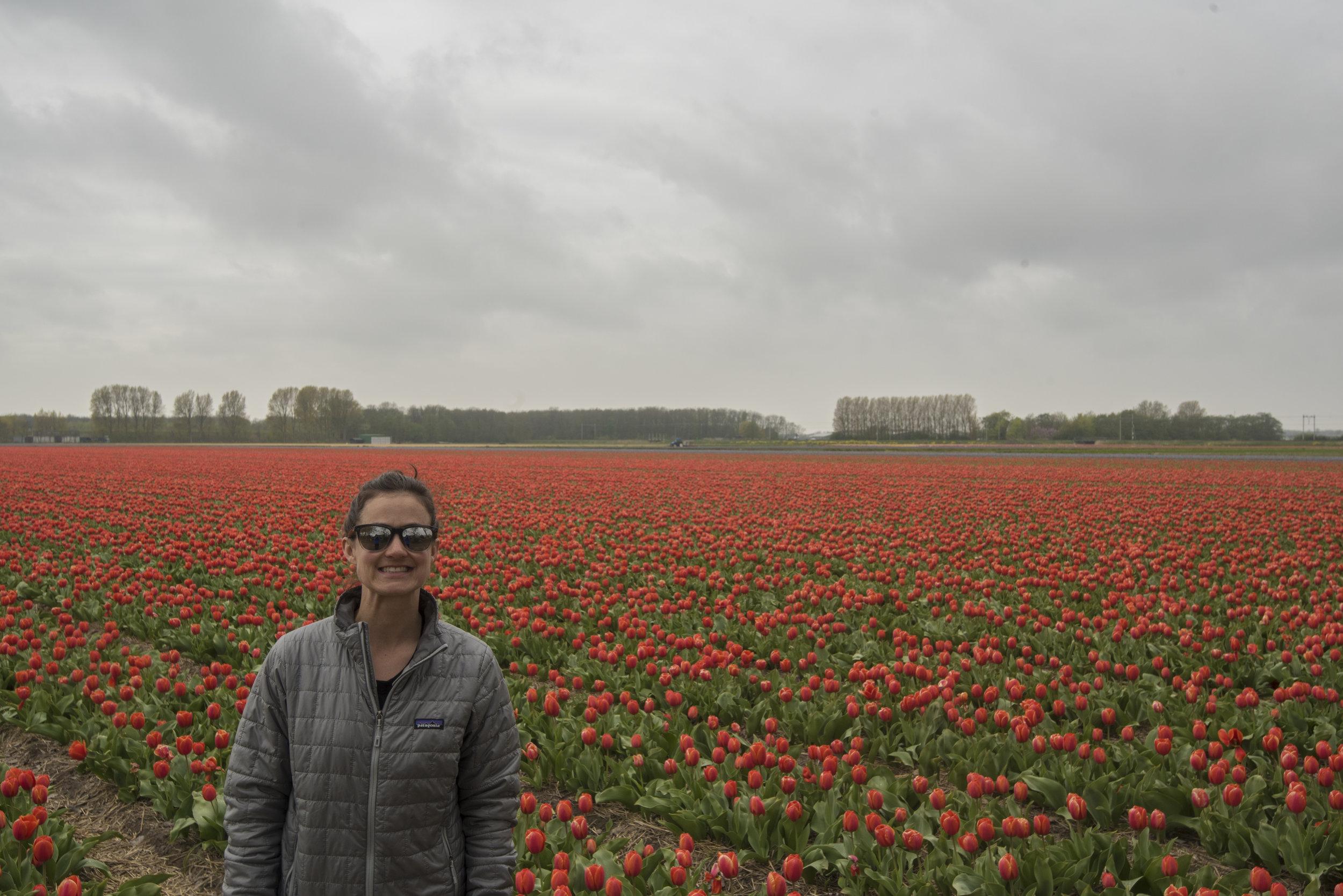 20170424-Holland-040.jpg
