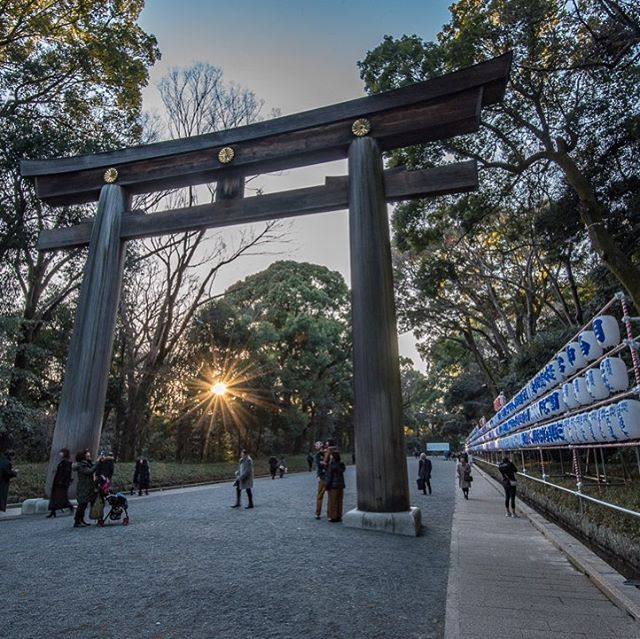 The Meiji Shrine in the middle of Tokyo is not only a sacred place, but is an amazing way to get away from the hustle and bustle of the city. The shrine was completed in 1920 and sits in a forest that covers 170 acres! #whereveryouland