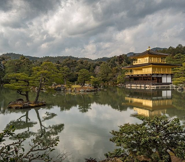 Kinkaku-ji is one of the most famous (and most photographed) Buddhist Temples in Japan. It is located in Kyoto and even on a gray day that gold shines bright! #whereveryouland