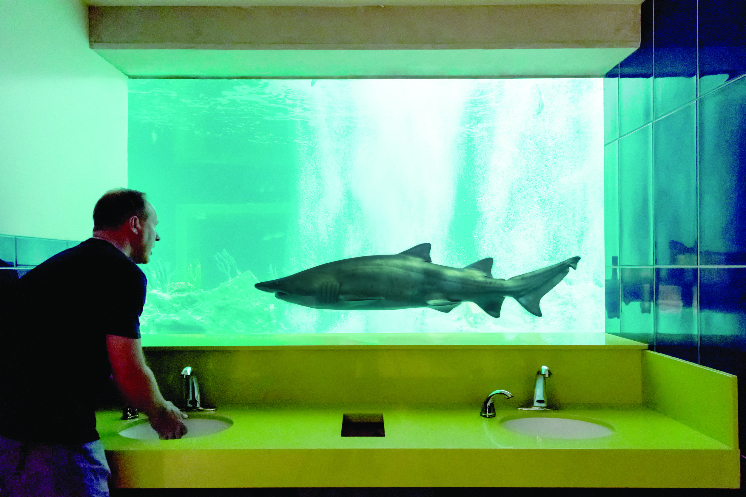 SharkBathroom-Guy-1.jpg