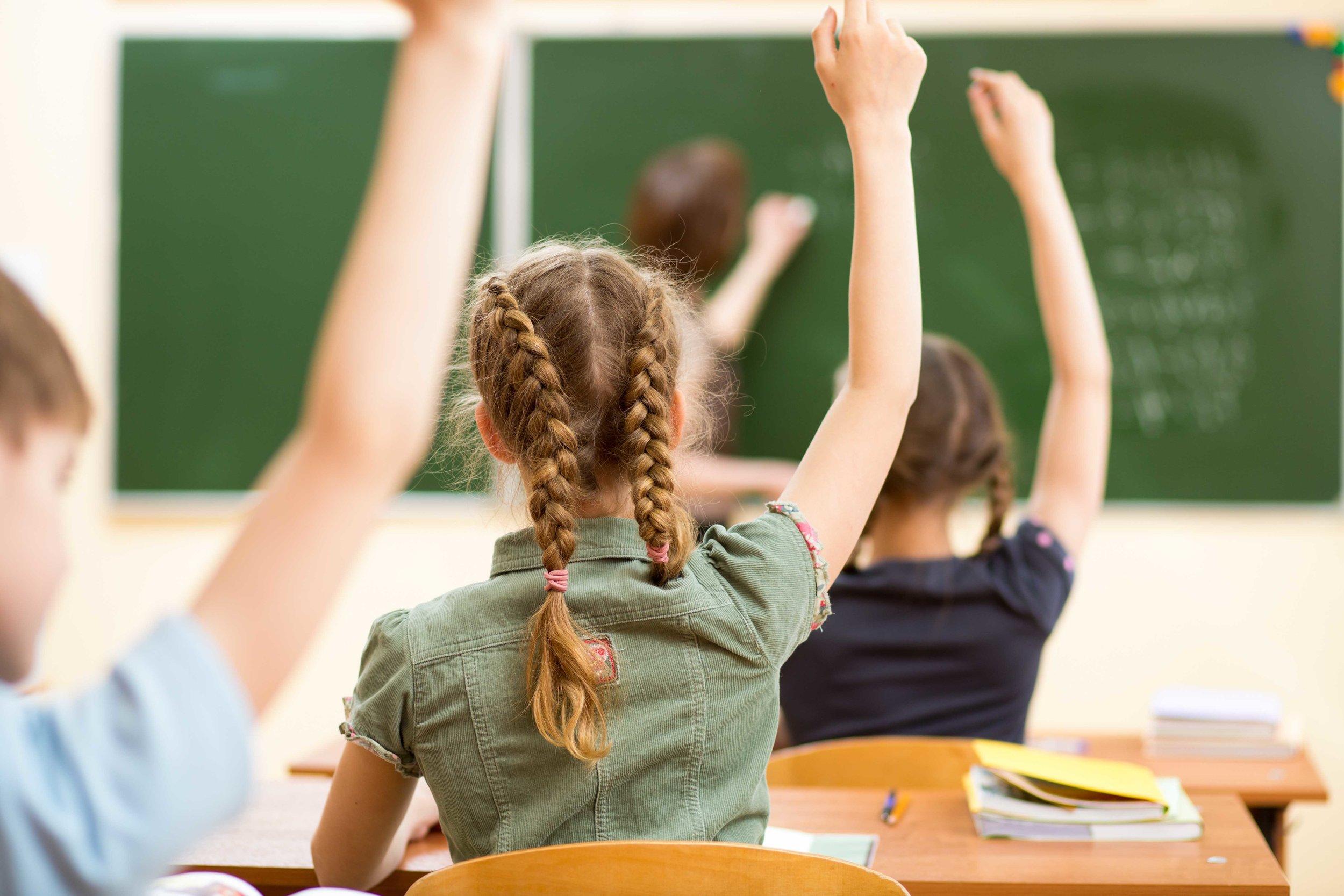 hand up in class.jpg