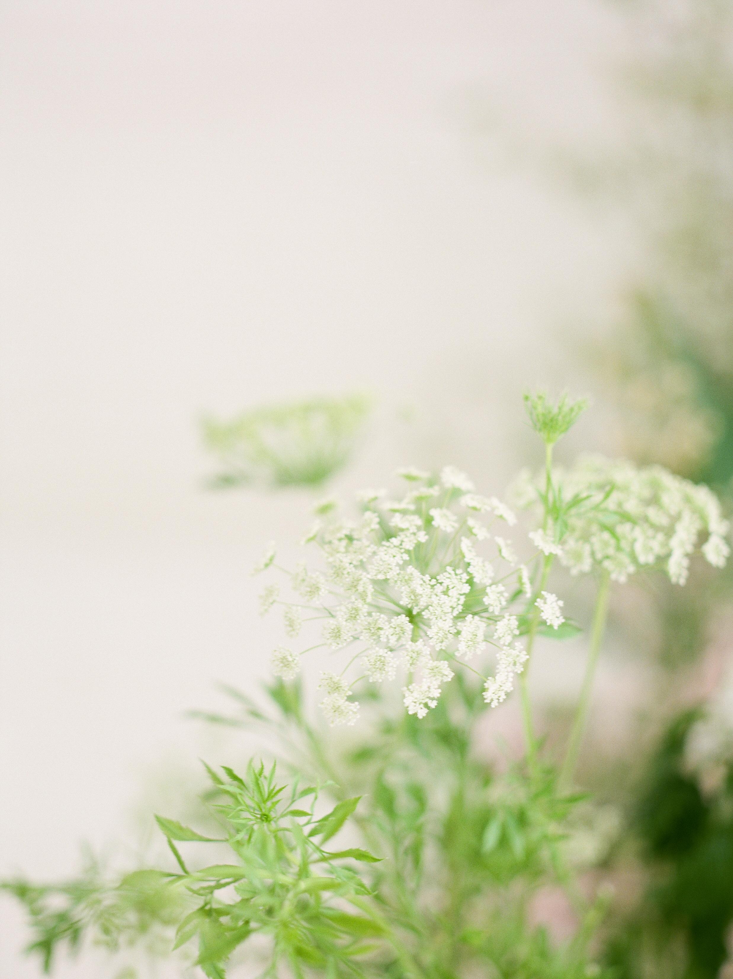 olya_vitulli_loom_bloom-39.jpg