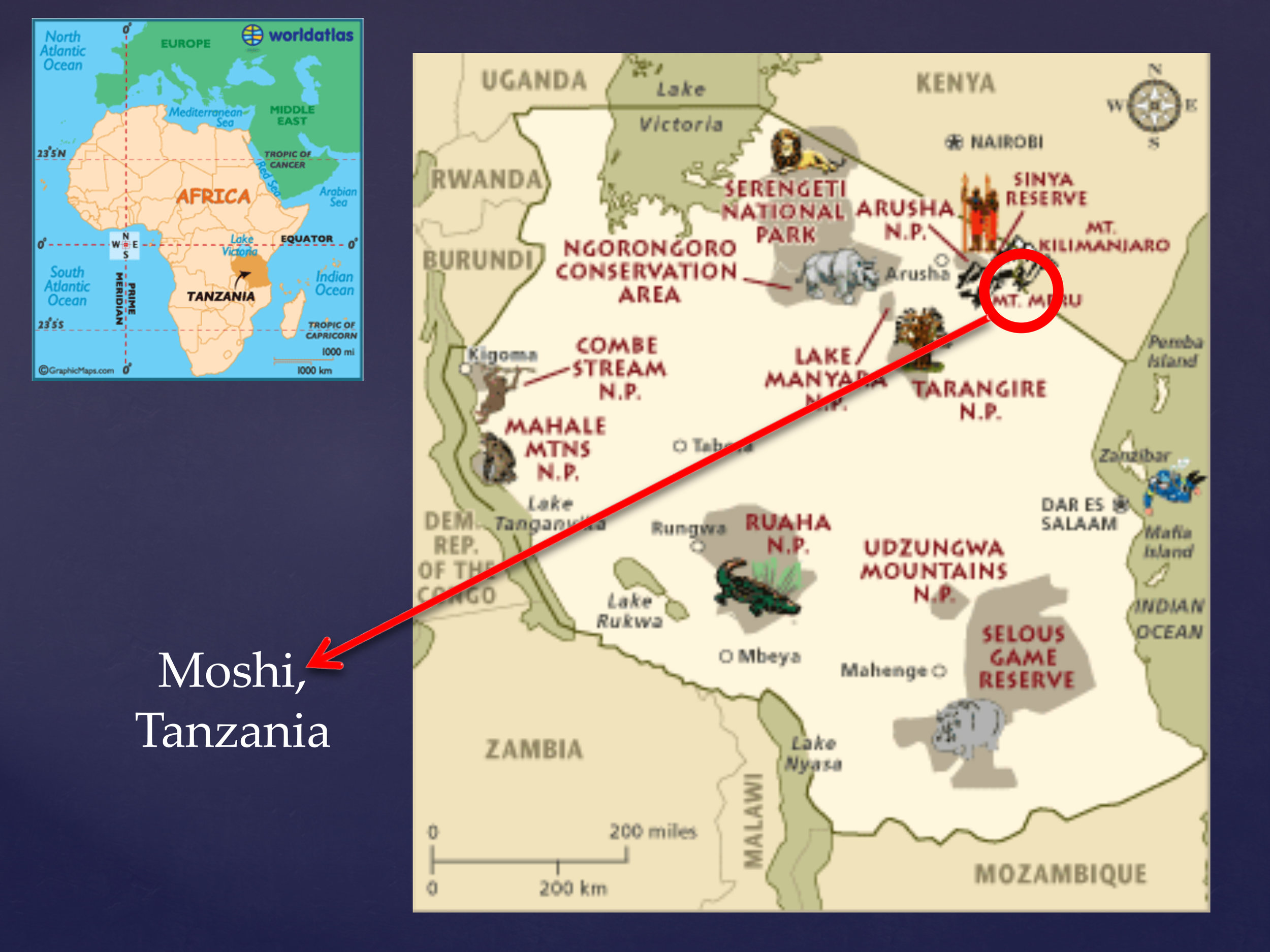 Moshi is nestled near Mt. Kilimanjaro and Mt. Meru, near the Kenyan border.