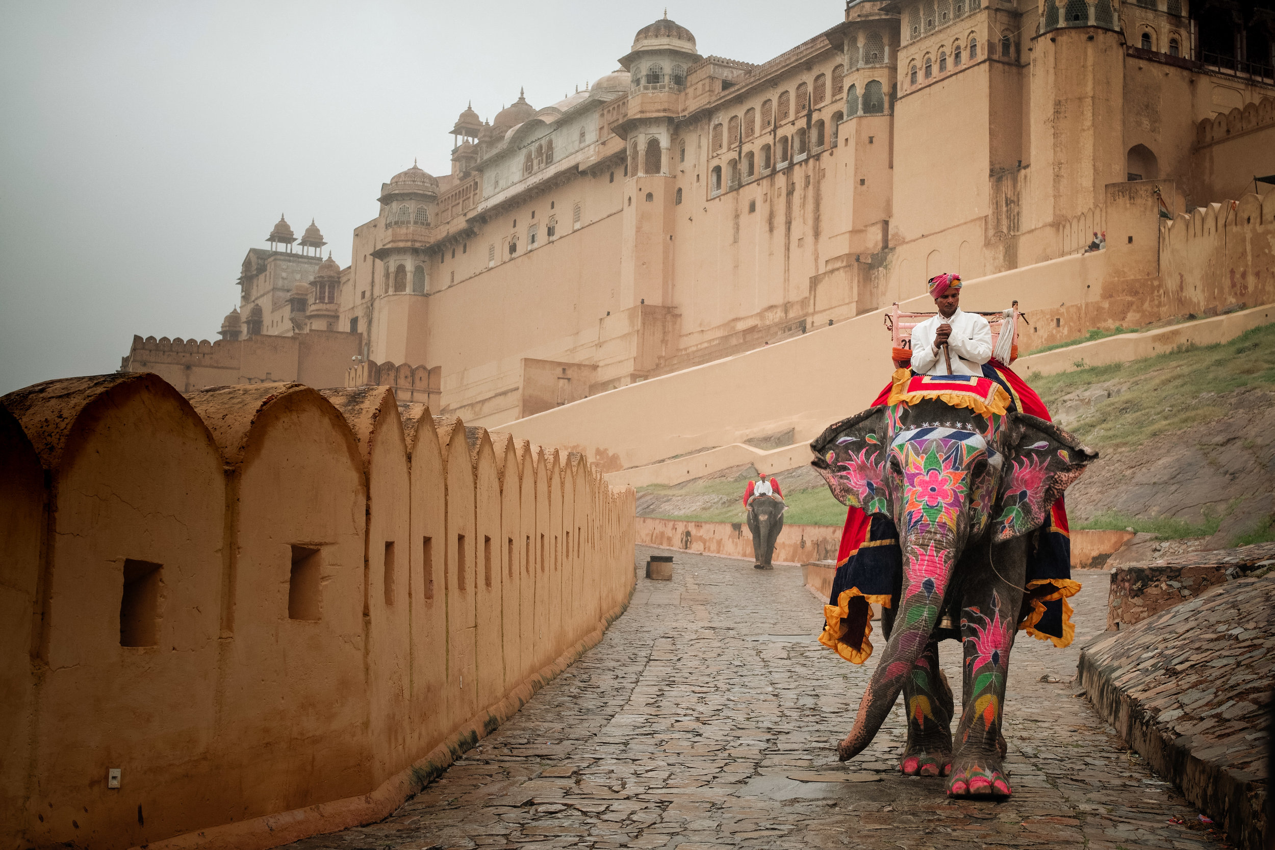 India_2018-384.jpg