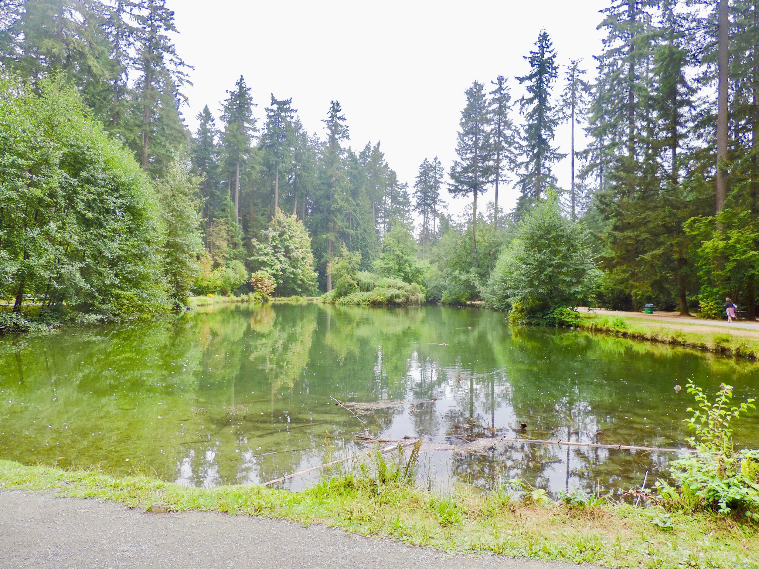 Upper Pond was definitely tranquil