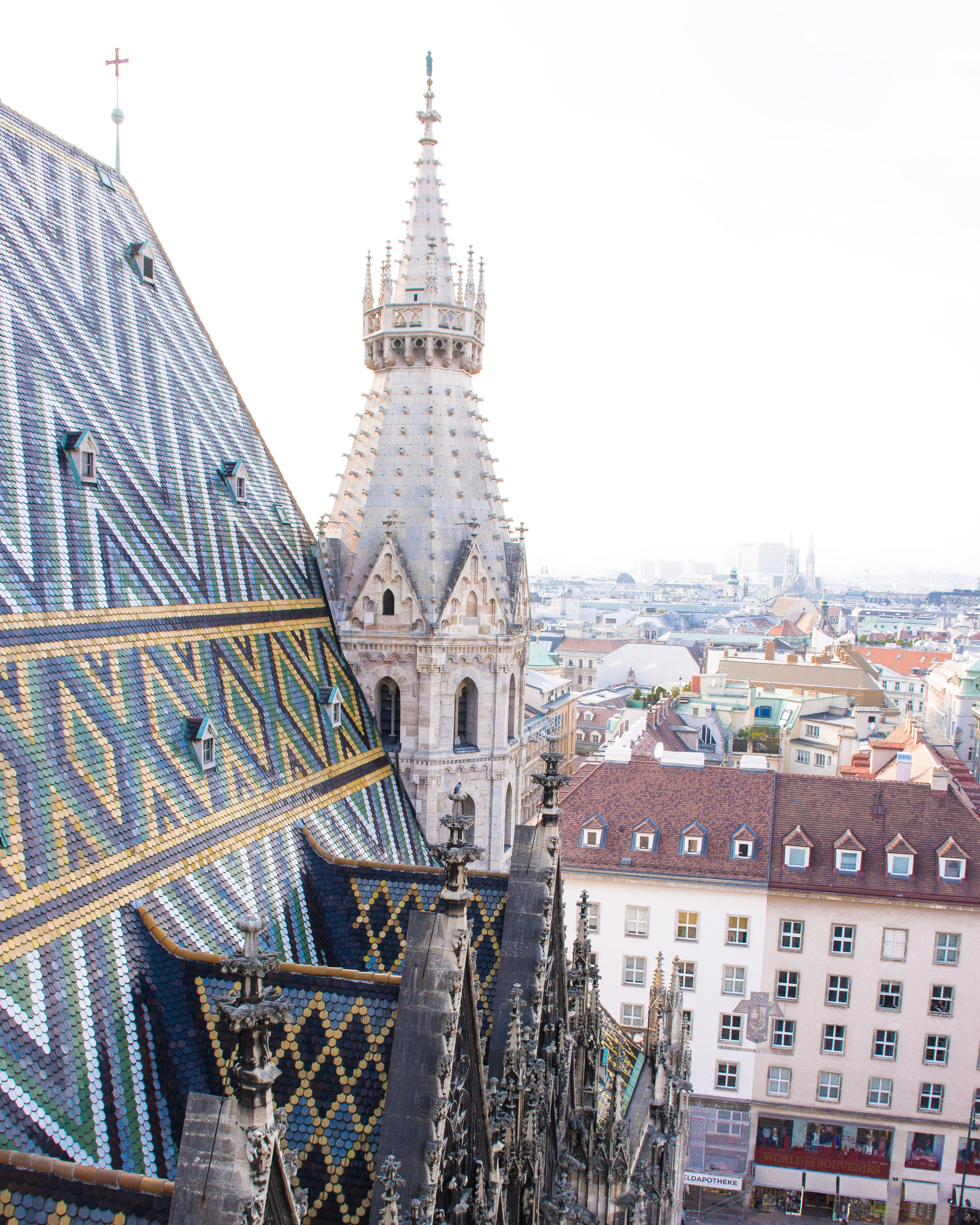 The gorgeous tiled roof of St. Stephens Cathedral