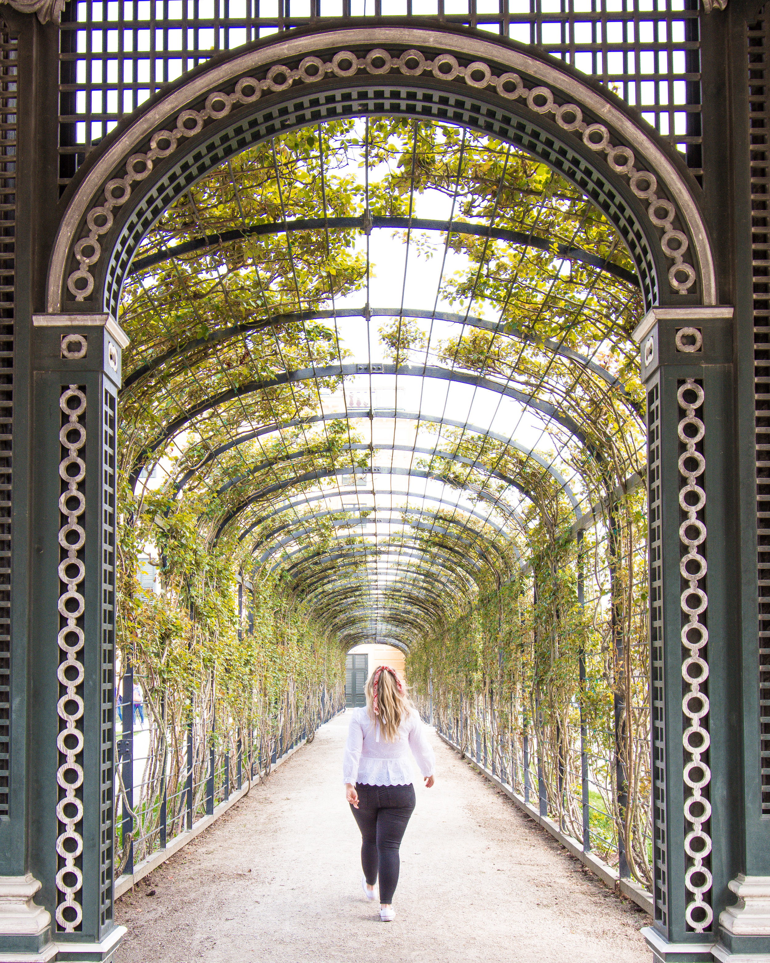 Make sure to walk around behind Schonbrunn Palace and view the gardens for free.  They are stunning, made even more impressive by their sheer size!