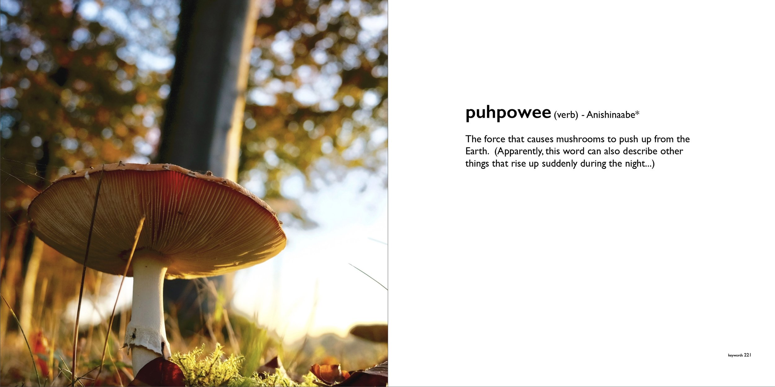 puhpowee_keywords.jpeg