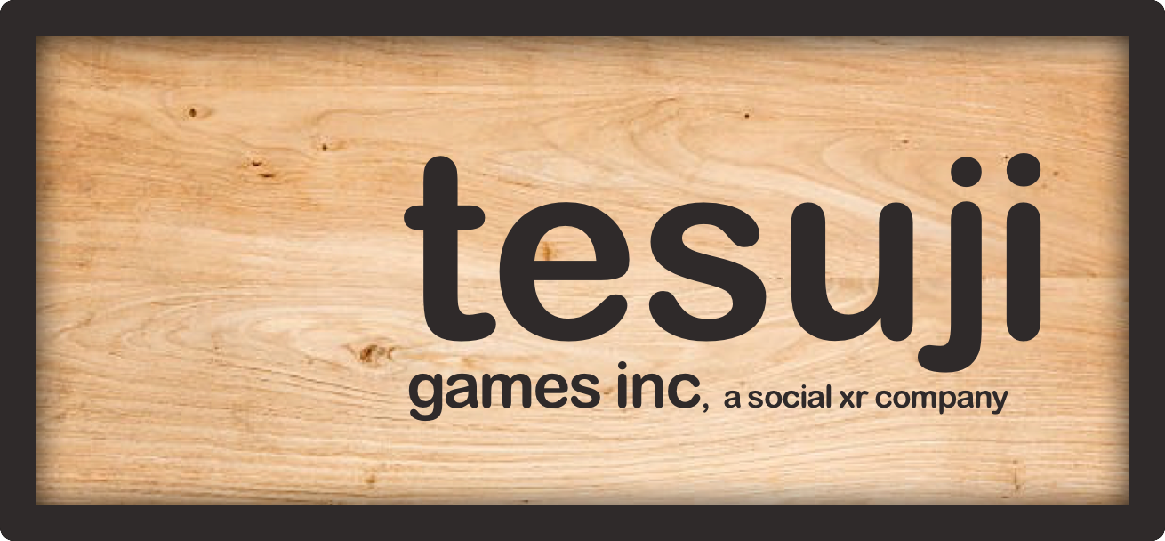 About the Company - Tesuji Games Inc, headquartered in Nevada City, CA, was founded to deliver broadly accessible mixed reality mobile experiences that involve video chat, games, learning, performance, and competition to create safe spaces for online connection and fun.