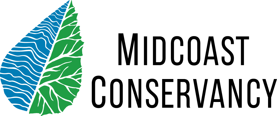 MC logo 3.png