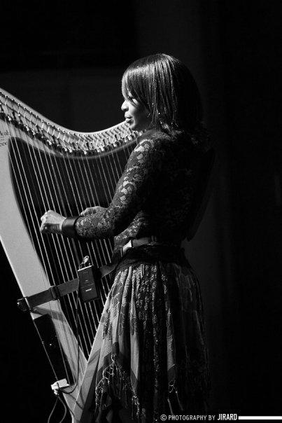 electric_harp_onstage_phoenix_jnp.jpg