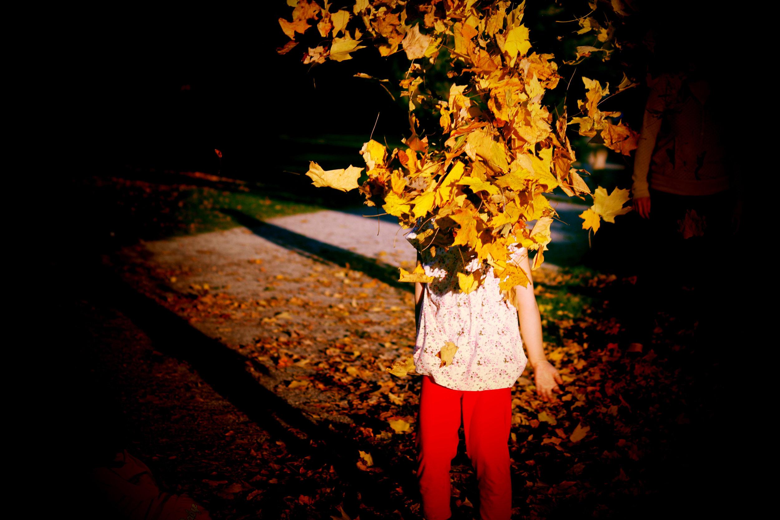 Leaves+head.jpg