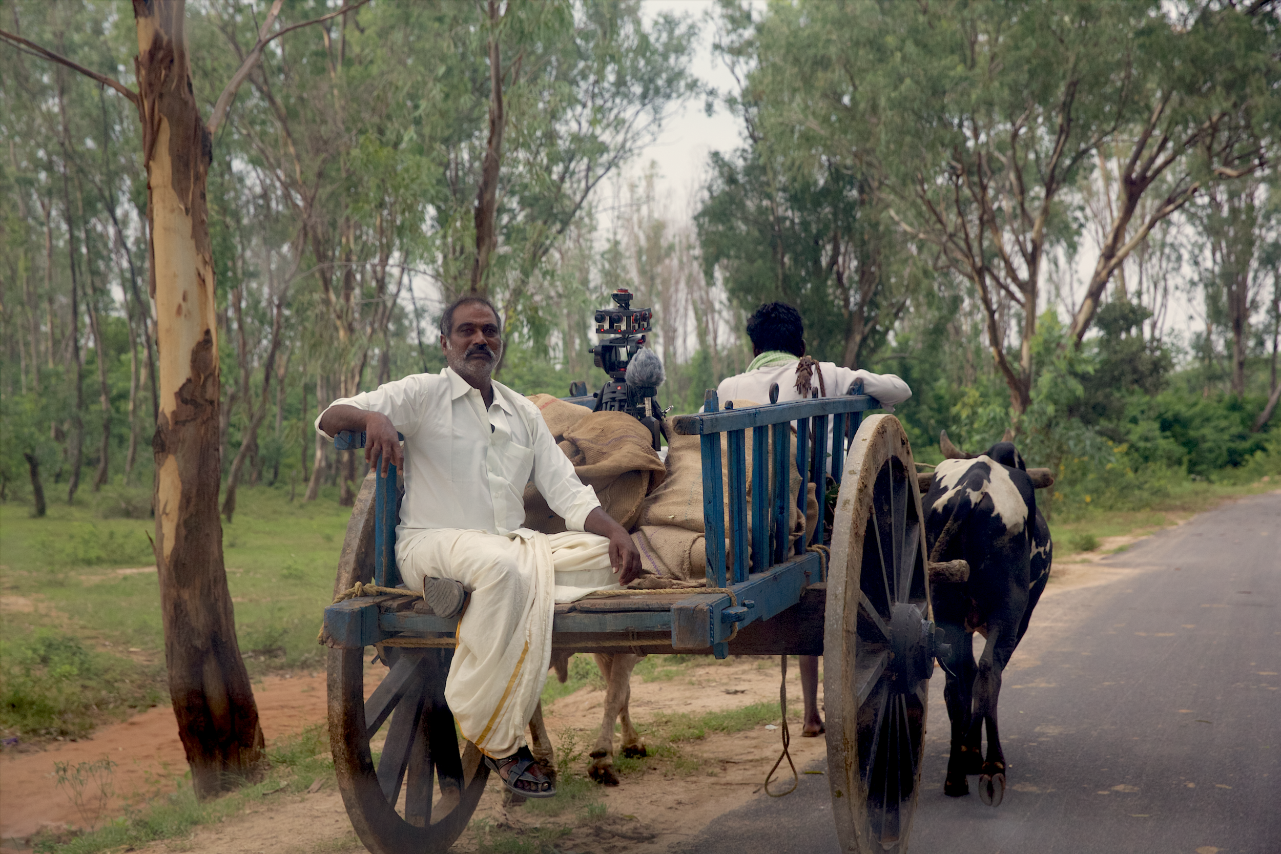 Notes to My Father VR Film Bullock Cart